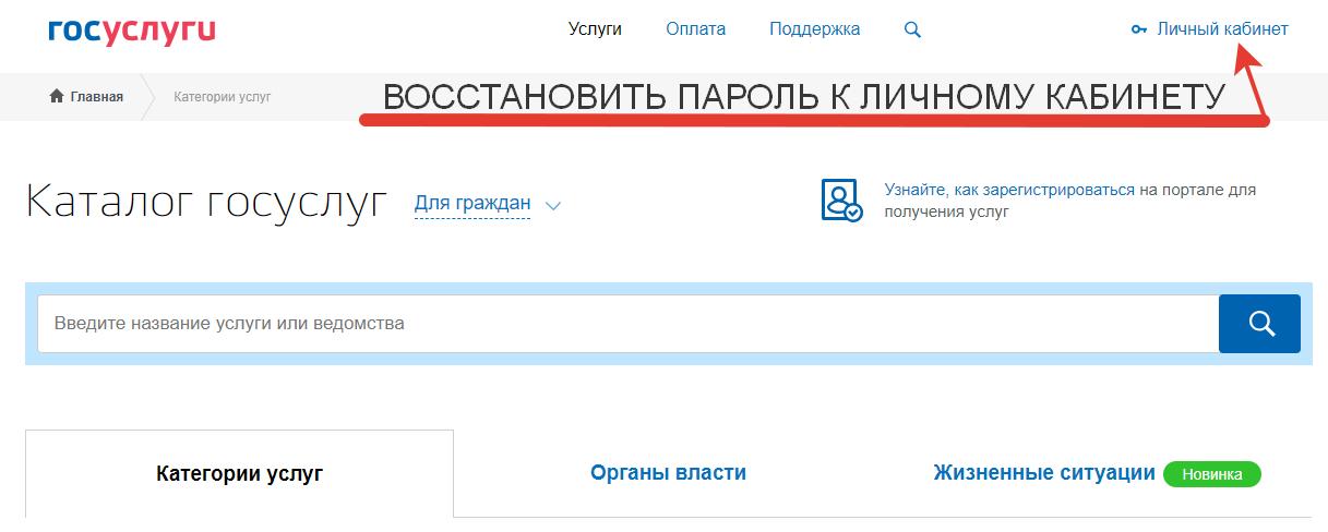Восстановить пароль к личному кабинету на сайте Госуслуг
