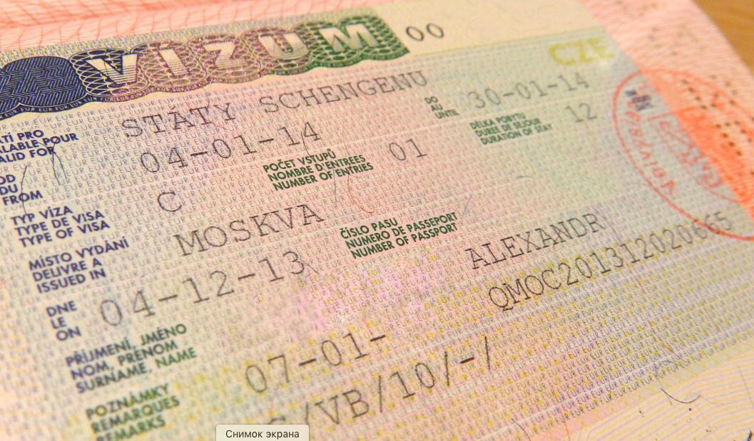 Виза шенген госуслуги